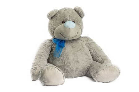 Image of grey toy teddy bear sitting at isolated white background.