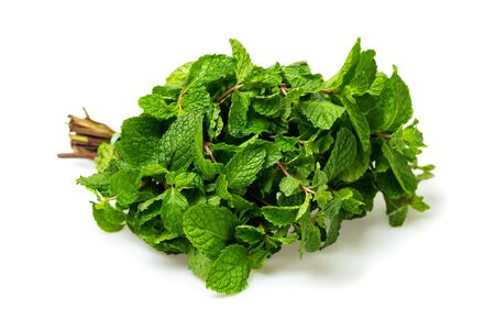 Closeup image of fresh green mint mint isolated at white background.