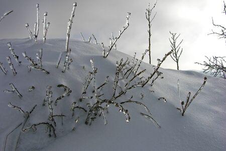 winter icing landscape background.