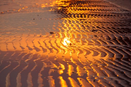 wet sand at the time of sunset Banco de Imagens