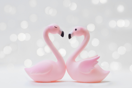 Flamingo couple in love with shiny light for Valentine's day or Wedding concept Banco de Imagens - 123010361