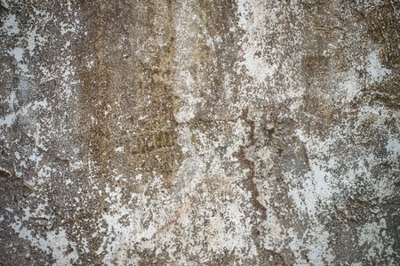 Texture of gray polished cement for background Banco de Imagens - 123010644