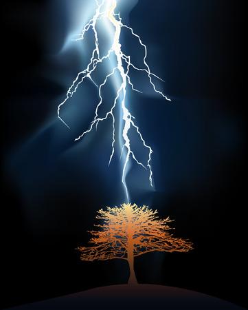 struck: Lightning struck in a lonely tree