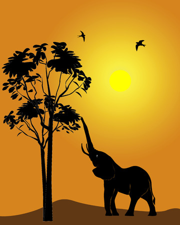 Black silhouette of an elephant on an orange background Иллюстрация