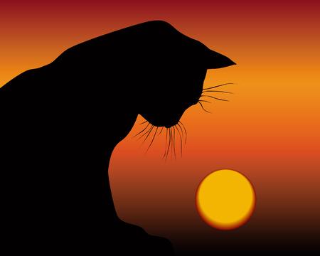 black cat and the setting sun on an orange background Ilustração