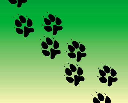 traces of the animal on a green background