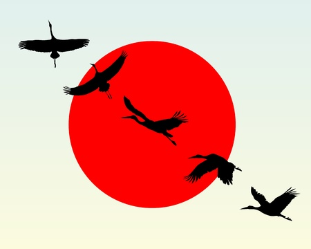 against the sun: Silhouettes of flying cranes against the red sun Illustration