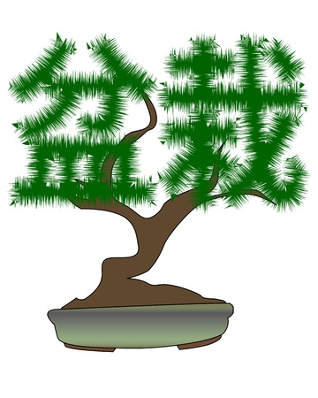 bonsai tree: Japanese bonsai tree in the form of hieroglyphs on a white background