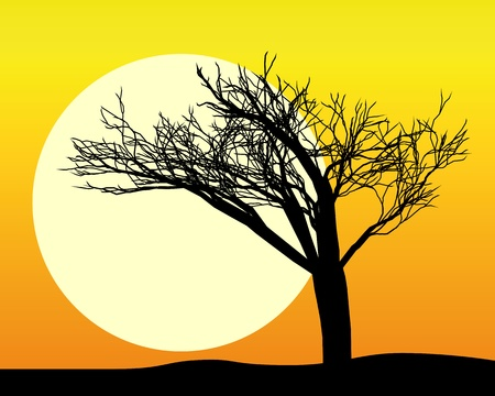 sillhouette: black silhouette of a tree in the sun and the sky orange Illustration