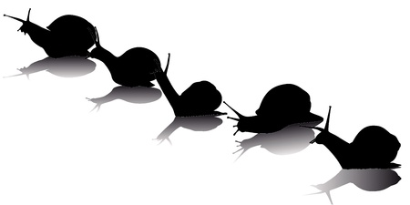 black silhouettes of the snail on a white background Illustration