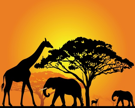 africa tree: black silhouettes of African animals in the savannah on an orange background
