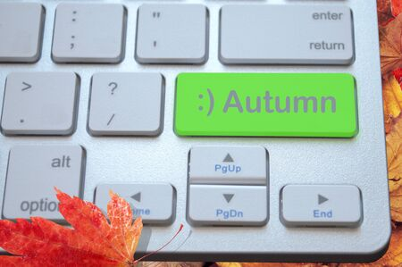 computer keyboard with a green autumn key on a background of yellow leaves