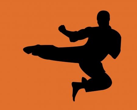 konflikt: obrony, karate, władzy, walki, pomarańczowy, konflikt, ninjitsu, walki, kung, wpływ, ochrony, szkolenia, ruch, sport,