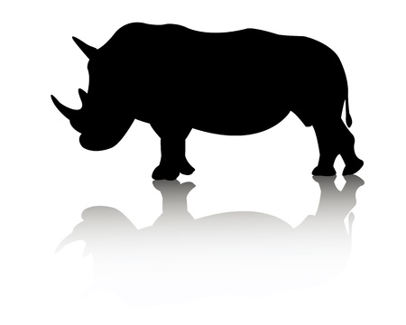 largest: rhino animal on white background