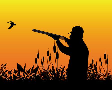 fusil de chasse: Hunter visant un fusil de chasse dans un canard sauvage dans l'herbe et de roseaux