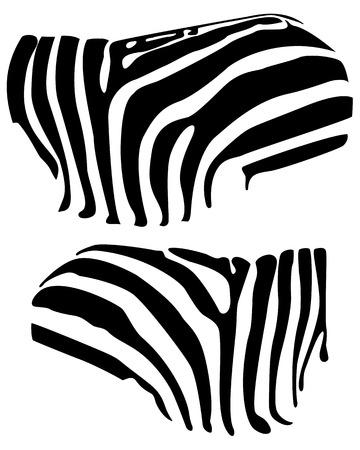 zebra stripes: background skin zebra zebra zebra skin texture background seamless zebra