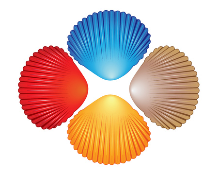 4 つの異なる色の白い背景の上の海の貝殻