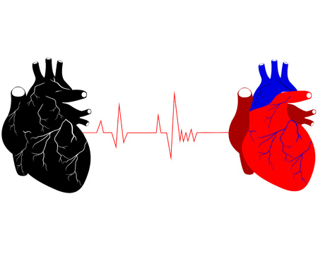 two human hearts in different colors black red