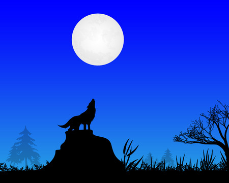 a wolf howls at the moon in the night time of the moon