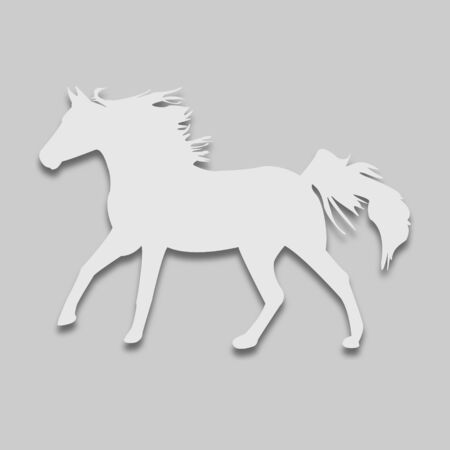 animal horse in a light tone with a shadow on a gray background