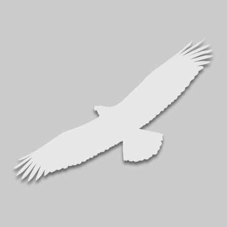 eagle bird in bright colors with a shadow on a gray background Ilustrace