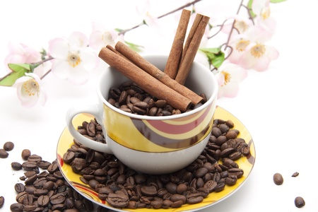 high spirited:   Coffee beans with cinnamon sticks and flowers