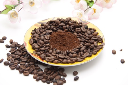 high spirited:  Whole coffee beans with flower branch