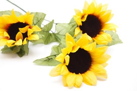 artificially: Three sunflowers Stock Photo