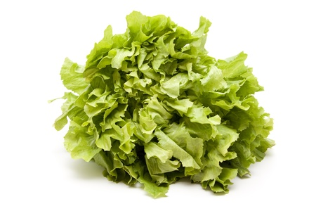 endive: Endive salad