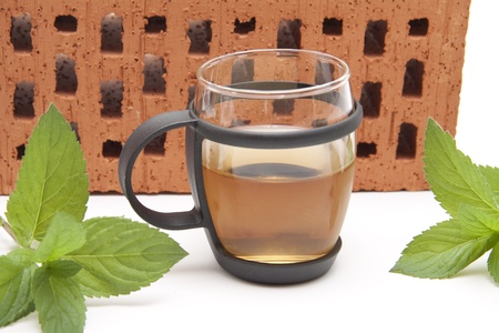 thirst quenching:  Green peppermint tea plant with tea glass