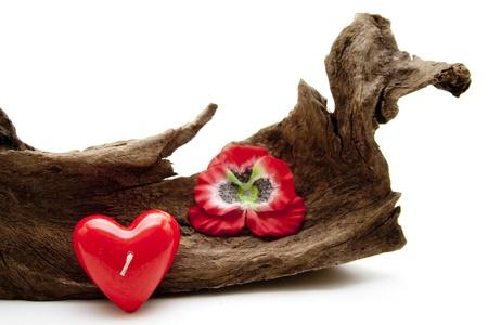 bougie coeur: Racine en bois avec une bougie coeur