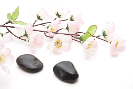 flatly: Stones and flower branch Stock Photo