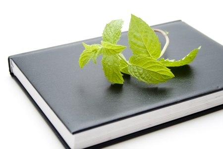 quoted: Notebook with peppermint leaf Stock Photo