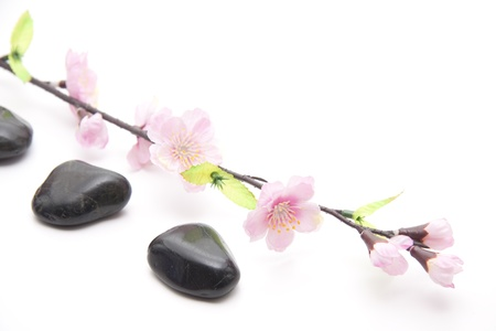 artificially: Flower branch with stones Stock Photo