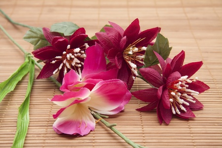 artificially: Coloured flowers Stock Photo