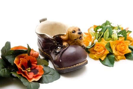 artificially: Shoe with dog