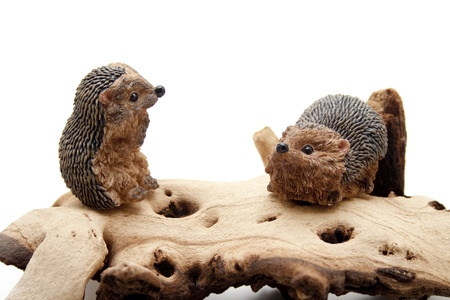 Hedgehog pair of on a wooden root Stock Photo - 12518081