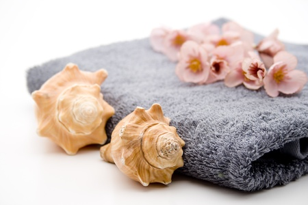 towelling: Hand cloth with sea mussels