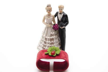 Wedding pair with cloverleaf Stock Photo - 12519484