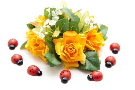 artificially:  Roses and beetles