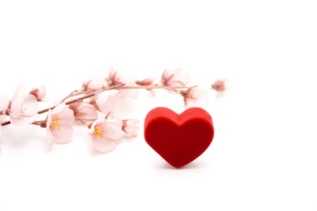 love proof: Heart and flower branch Stock Photo