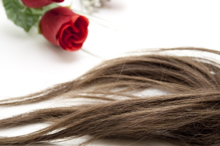 artificially: Brown hairpiece with red rose Stock Photo