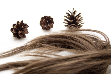 hairpiece: Brown hairpiece with pine cone