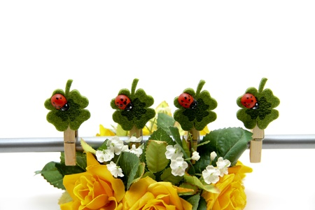 Rose flower arrangement Stock Photo - 12795502