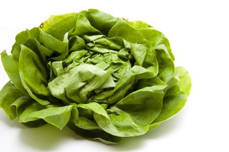 calories poor:  Green head salad  Stock Photo