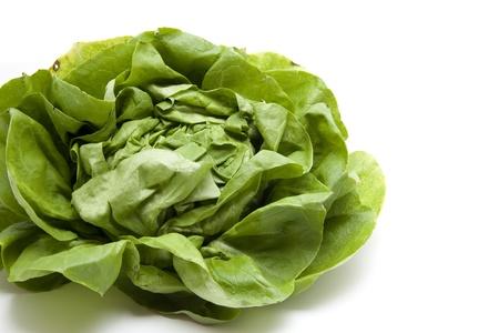 calories poor: More freshly green head salad  Stock Photo