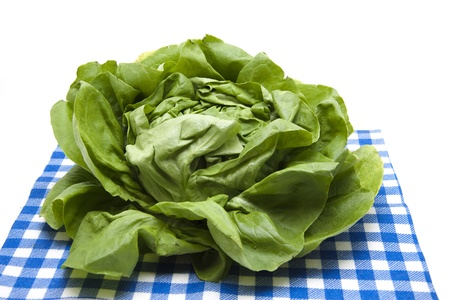 calories poor: More freshly head salad with napkin