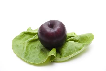 calories poor: Blue plums on salad leaf Stock Photo