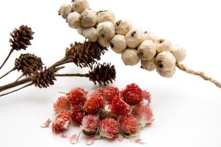 artificially: Dry flower arrangement