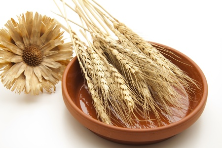artificially: Wheat ear in ceramic plate with straw flower